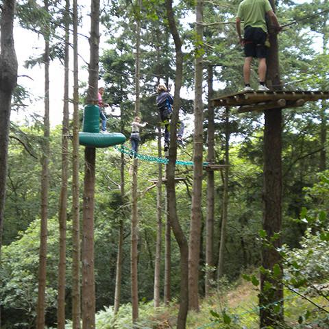 bomen klimmen bij La Roche D'oetre