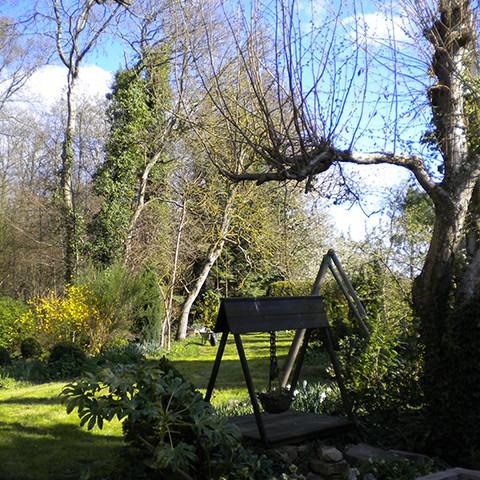 tuin vanaf terras gezien